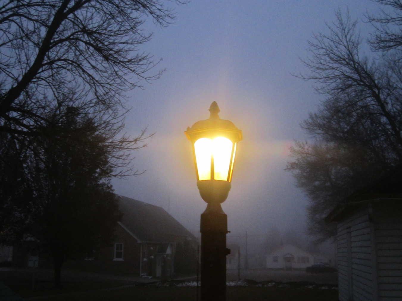 Oak Trees, Lamp-Posts, and Joy – Isaiah 61:1-4, 8-11 Advent Sermon