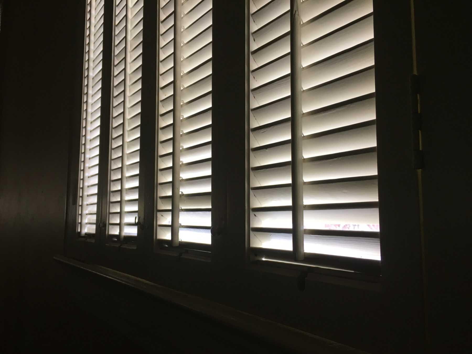 Elevate Kindness – a Prescription for Dark Days